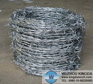 Stainless barbwire